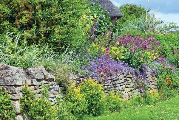 2021-Gardening-Trends