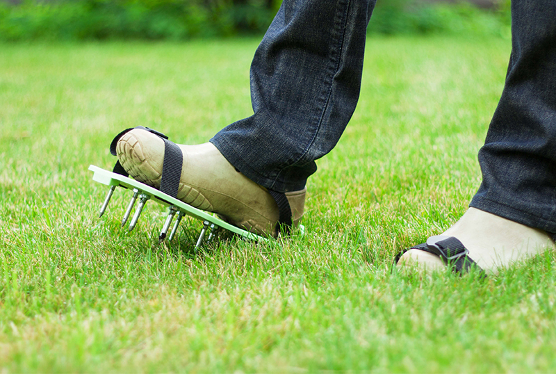 A-Crash-Course-On-Lawn-Aeration