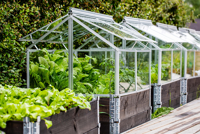 Building-A-DIY-Greenhouse-At-Home