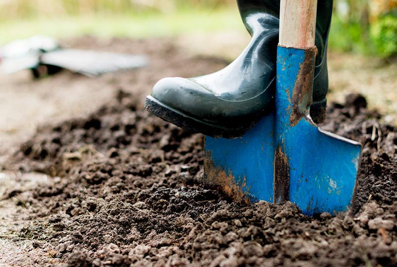 Eight-Autumn-Gardening-Tips-For-Green-Thumbs