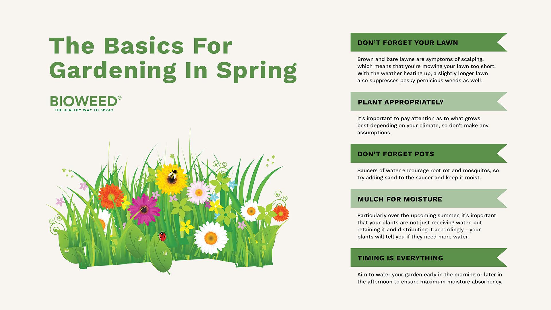 gardening-in-summer-hot-tips