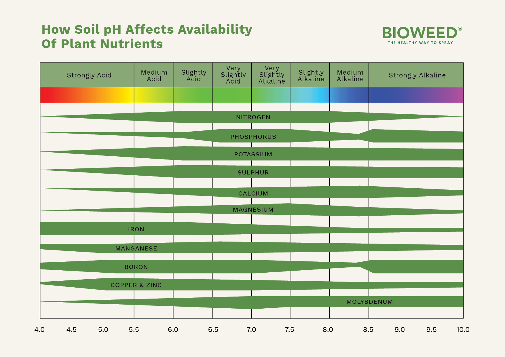 How-Soil-pH-Affects-Availability-Of-Plant-Nutrients