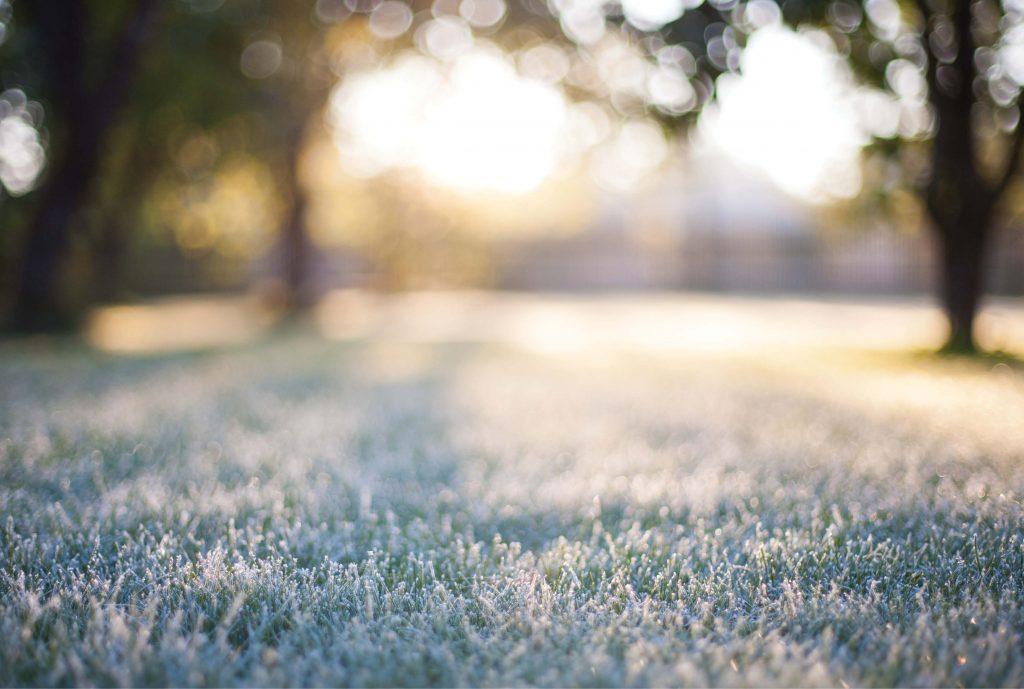 Preparing-Your-Garden-For-Winter