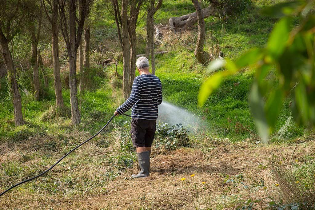 Spraying a paddock with BioWeed