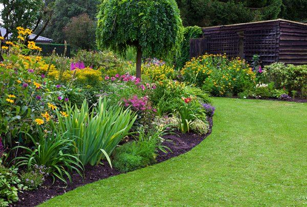Using-Biotic-Booster-In-Your-Garden