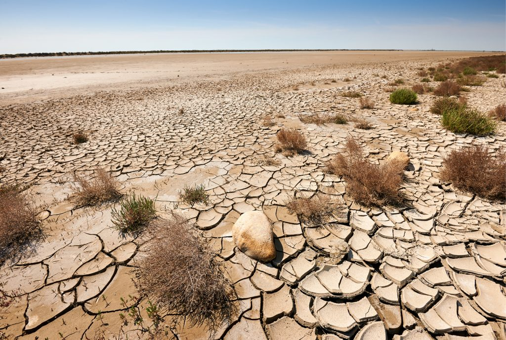 What-Is-Desertification-And-Why-It-Needs-Our-Attention