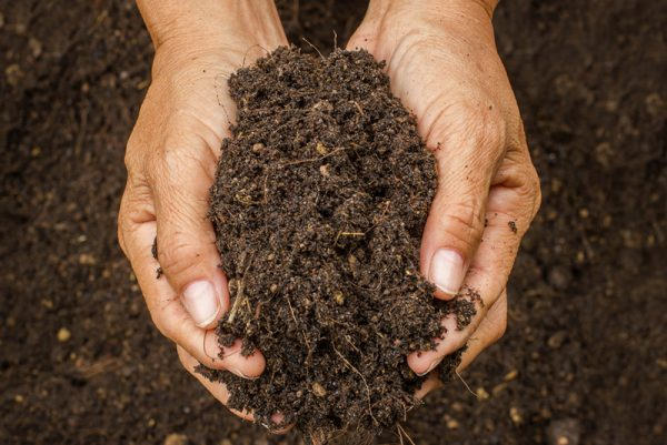 different-types-of-soil